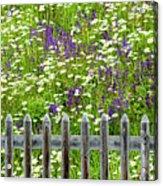 Wild Flowers On A Meadow Acrylic Print by Jorg Greuel