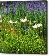 Wild Grow Acrylic Print