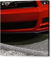 Wild Red Mustang Acrylic Print