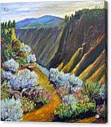 Wild Rivers New Mexico Acrylic Print