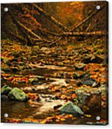 Wild Valley Acrylic Print