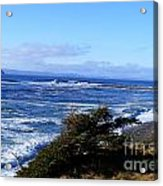 Wild Waves Acrylic Print
