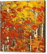 Wild Wild Woods Acrylic Print