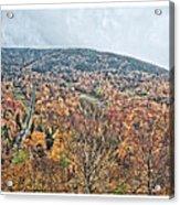 Wildcat Mountain Gold Acrylic Print