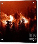 Wildfire Acrylic Print