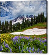 Wildflowers On Mazama Ridge Acrylic Print