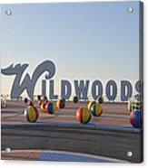 Wildwoods Acrylic Print
