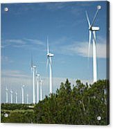 Wind At Work Acrylic Print