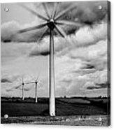 Wind Turbines Mono Acrylic Print