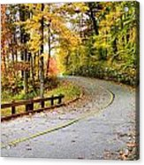 Winding Road Acrylic Print