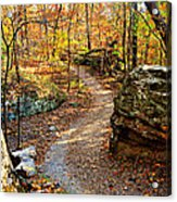 Winding Trail Acrylic Print