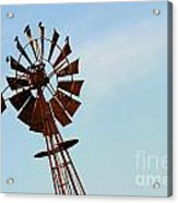 Windmill-3667 Acrylic Print