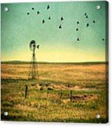 Windmill And Birds Acrylic Print