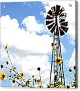 Windmill Dabble 2a Acrylic Print