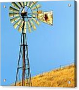 Windmill On Golden Hill Acrylic Print