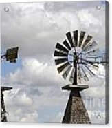 Windmills 5 Acrylic Print