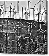 Windmills By Tehachapi  Acrylic Print by Susanne Van Hulst