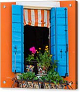 Window Plants Acrylic Print