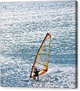 Windsurfer, Baja, Mexico Acrylic Print