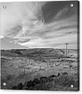 Windswept Hills Bw Acrylic Print