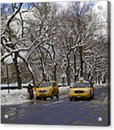 Winter - 2011 Acrylic Print