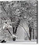 Winter 0002 Acrylic Print