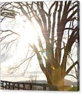 Winter At Greenrise Acrylic Print