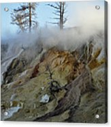 Winter At Yellowstone's Mammoth Terrace Acrylic Print
