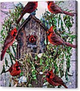 Winter Birdhouse Acrylic Print