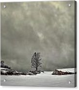 Winter Blues Acrylic Print