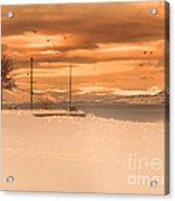 Winter Flight Acrylic Print