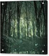 Winter Forest At Twilight Acrylic Print