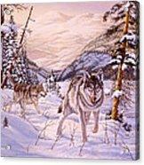 Winter Hunt Acrylic Print