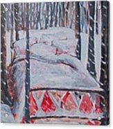 Winter Hybernation Acrylic Print by Tilly Strauss