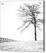 Winter In Black And White Acrylic Print