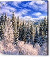 Winter In The Rockies Acrylic Print