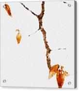 Winter Interludes Acrylic Print