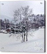 Winter Landscape 6 Acrylic Print
