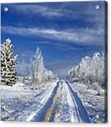 Winter Rural Road Acrylic Print
