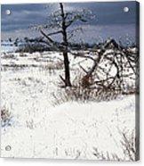 Winter Shenandoah National Park Acrylic Print by Thomas R Fletcher