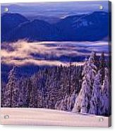 Winter Snow, Cascade Range, Oregon, Usa Acrylic Print