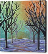 Winter Solitude 11 Acrylic Print