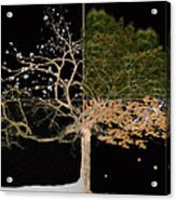 Winter Spring Summer And Fall Acrylic Print