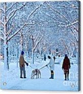 Winter Twilight Walk Acrylic Print