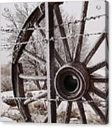 Winter Wheel Acrylic Print by Wesley Hahn