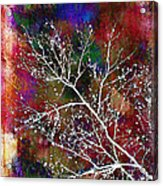 Winter Wishes Acrylic Print by Judi Bagwell