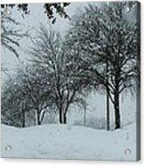 Winterlude Acrylic Print