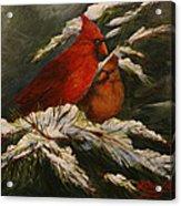 Winters Cardinals Rule Acrylic Print