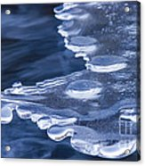 Winters Grip Acrylic Print