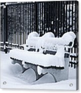 Winter's Quiescence Acrylic Print by Dale Kincaid